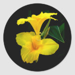 Canna Lily Round Stickers