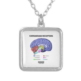 Cannabinoid Receptors Inside (Brain Anatomy) Silver Plated Necklace