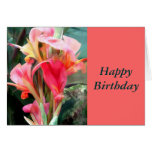 Cannas Pretty in Pink Greeting Card