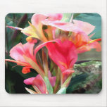Cannas Pretty in Pink Mouse Pad