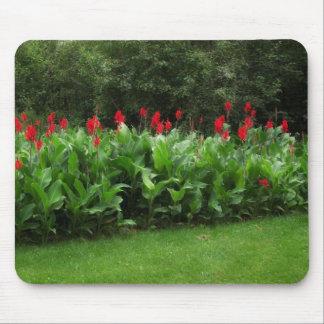 Cannas rojo en el jardín verde Mousepad de Northwo Tapetes De Ratón