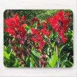 Cannas rojo en el jardín verde Mousepad de Northwo Tapete De Ratones