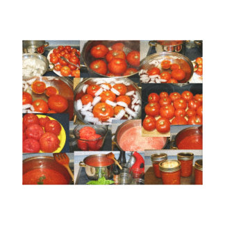 Canning Tomatoes Canvas Print