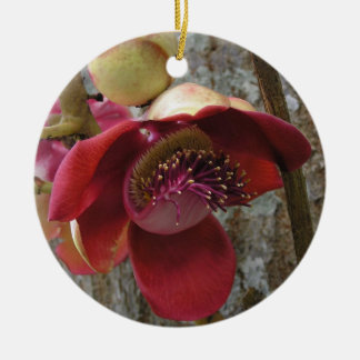Cannonball flower ornament
