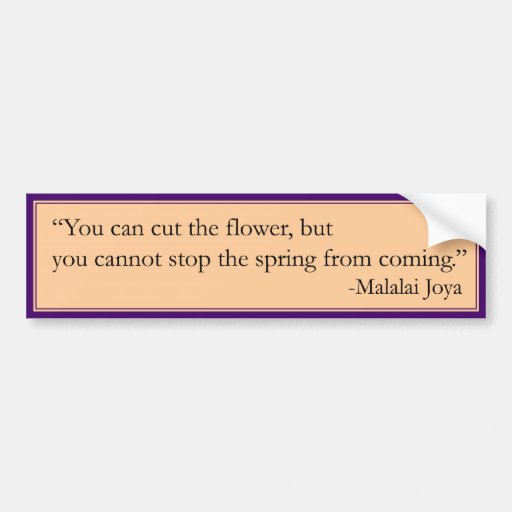 Cannot Stop the Spring Car Bumper Sticker