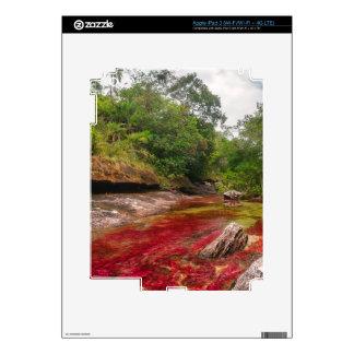 CANO CRISTALES 1 iPad 3 SKIN