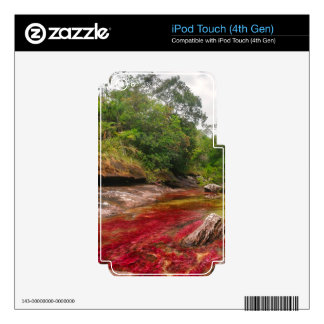 CANO CRISTALES 1 iPod TOUCH 4G SKINS