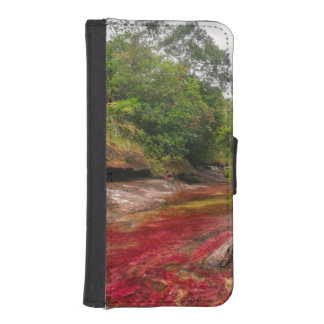 CANO CRISTALES 1 PHONE WALLET