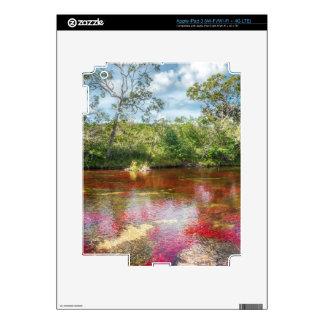 CANO CRISTALES 3 iPad 3 PEGATINAS SKINS