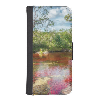 CANO CRISTALES 3 PHONE WALLET CASES