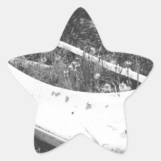Canoa abandonada pegatina en forma de estrella