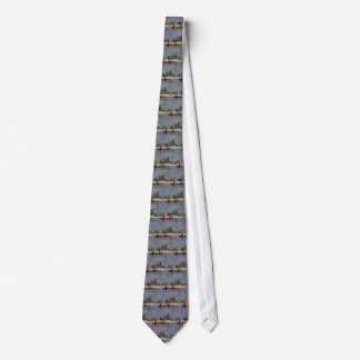 Canoe the Similkameen River, southern BC Tie