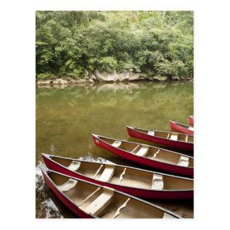 Canoeing el río de Macal, Belice Postales