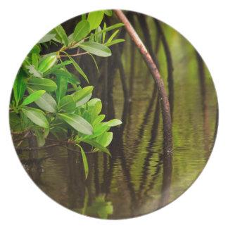 Canoeing Through Quiet Mangroves Melamine Plate