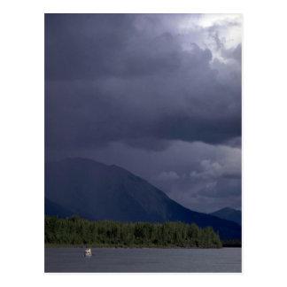 Canoeist on the Nahanni River, NWT, Canada Postcard