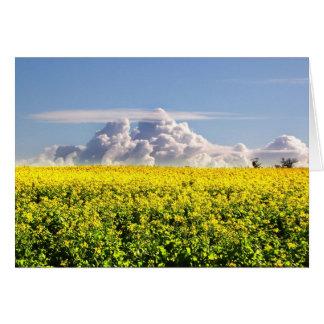 Canola & Clouds Card