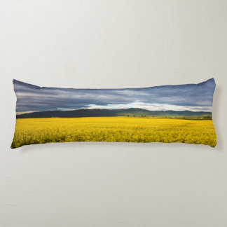 Canola field in morning light in the Flathead Body Pillow