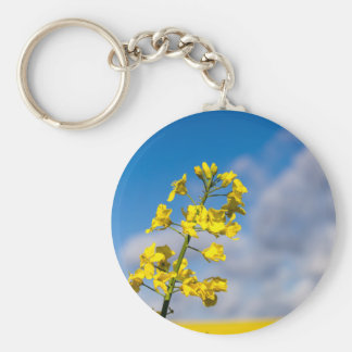 Canola field in summer with yellow flowers and blu basic round button keychain