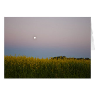 Canola Field under the moon Greeting Card