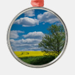Canola field with tree and blue sky christmas ornaments