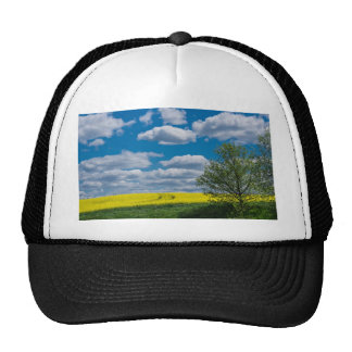 Canola field with tree and blue sky trucker hat