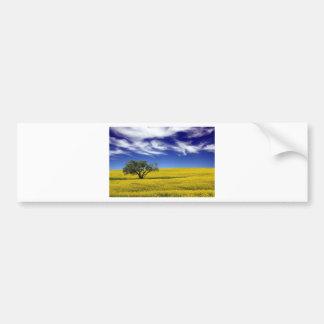 Canola Sky, Saskatchewan, Canada Bumper Sticker