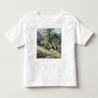 Canonteign, Devon Toddler T-shirt