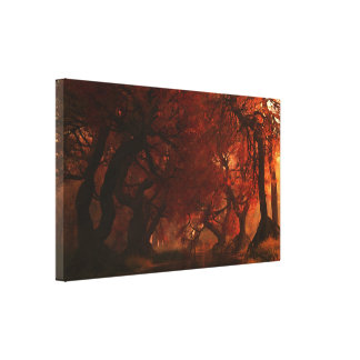 Canopy Creek (Autumn) Wrapped Canvas Canvas Print