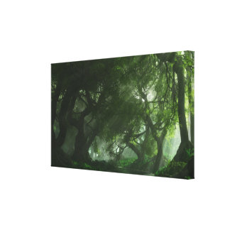 Canopy Creek (Summer) Wrapped Canvas Stretched Canvas Print