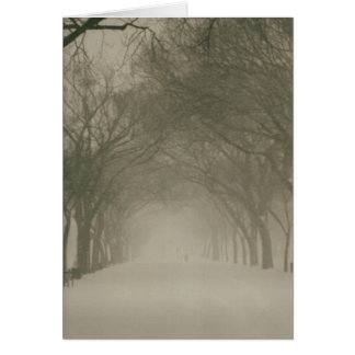 Canopy in a snowstorm card