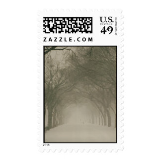 Canopy in a snowstorm postage