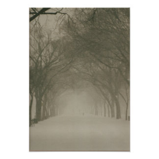 Canopy in a snowstorm poster