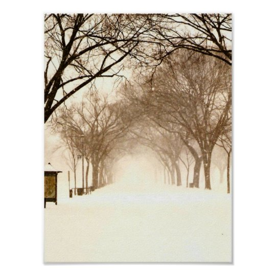 Canopy in a snowstorm with poster pillar-original