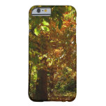 Canopy of Fall Leaves II Yellow Autumn Photography Barely There iPhone 6 Case