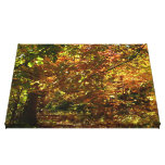 Canopy of Fall Leaves II Yellow Autumn Photography Canvas Print