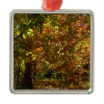 Canopy of Fall Leaves II Yellow Autumn Photography Metal Ornament