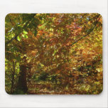 Canopy of Fall Leaves II Yellow Autumn Photography Mouse Pad