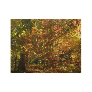 Canopy of Fall Leaves II Yellow Autumn Photography Wood Poster