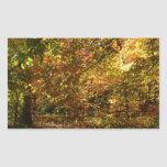 Canopy of Fall Leaves Sticker