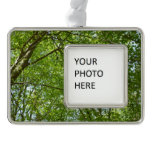 Canopy of Spring Leaves Green Nature Scene Christmas Ornament