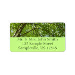 Canopy of Spring Leaves Green Nature Scene Label