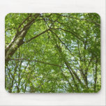 Canopy of Spring Leaves Green Nature Scene Mouse Pad