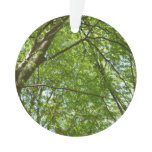 Canopy of Spring Leaves Green Nature Scene Ornament