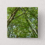 Canopy of Spring Leaves Green Nature Scene Pinback Button