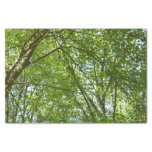 Canopy of Spring Leaves Green Nature Scene Tissue Paper