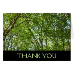Canopy of Spring Leaves Thank You (Blank Inside) Card