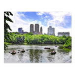 Canotaje en Central Park Postal