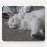 Cansado de jugar el gato Mousepad del angora Alfombrilla De Raton