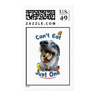 Can't Eat Just One Bird Dog Stamps
