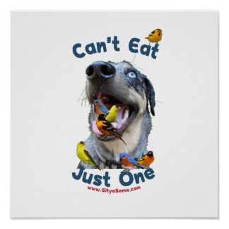 Can't Eat Just One Bird Dog Poster
